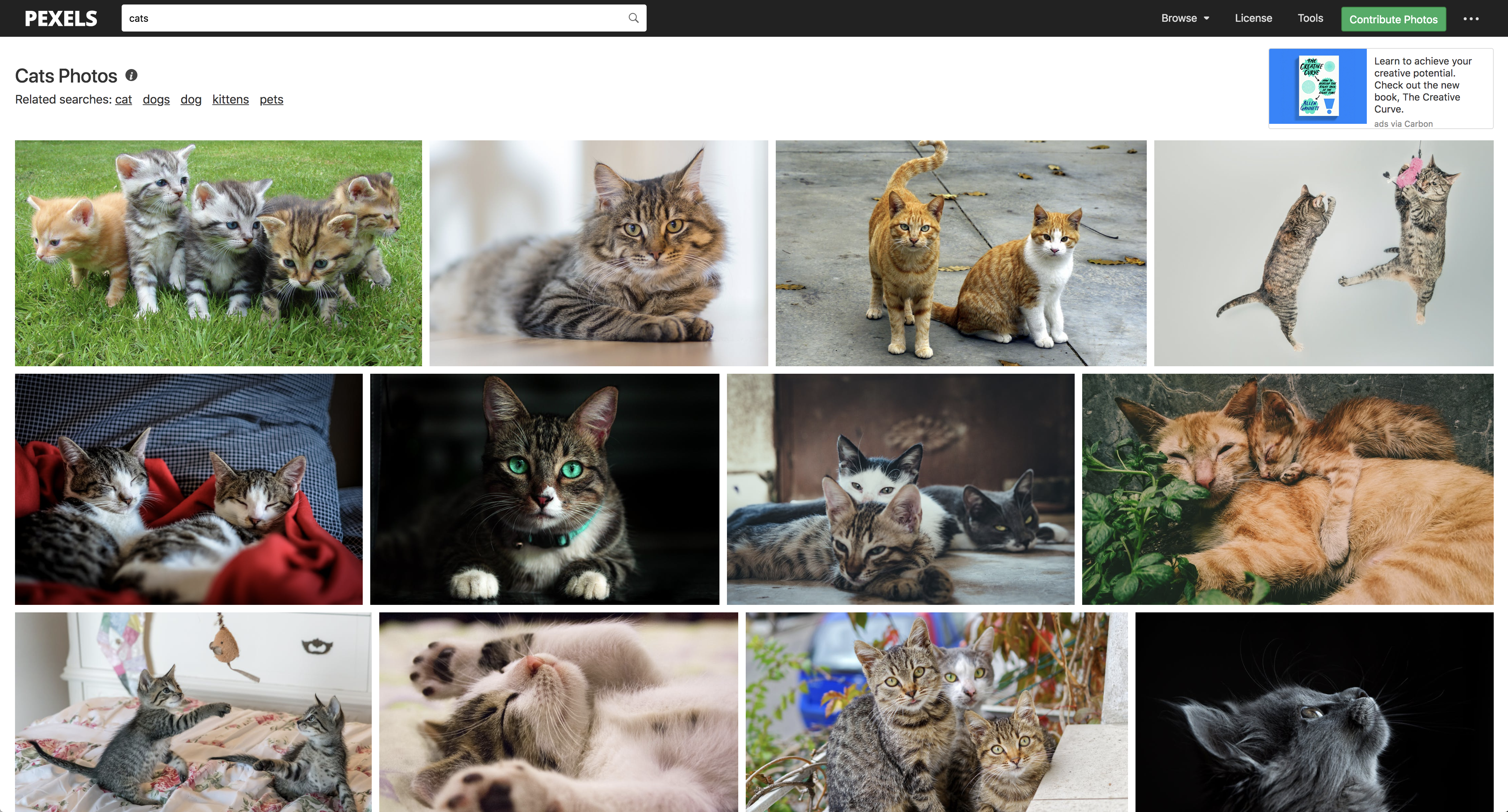 Fast Web Scraping With ReactPHP: Download All Images From a